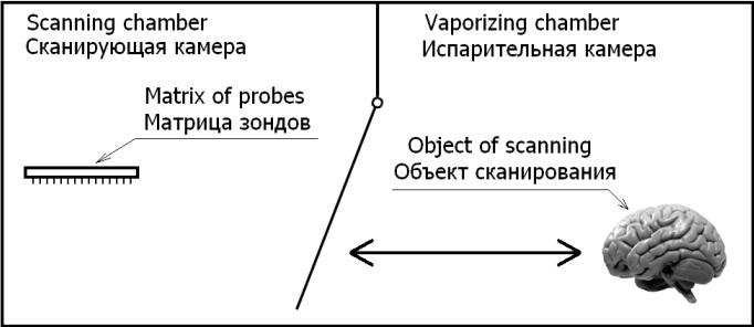 Оцифровка сознания - сканирование нейронной структуры и активности синапсов нейронов головного мозга